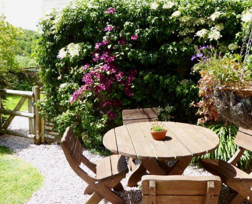 Dittiscombe gardens